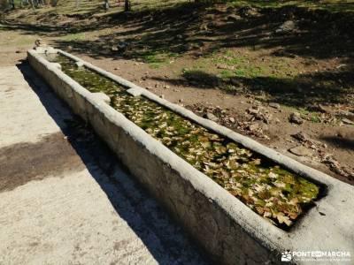 Sabinar y Valle de Lozoya; sightseeing hiking experience alimentación para senderismo